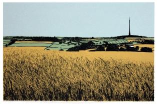 Emley Moor 2