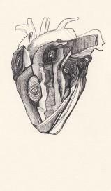 Heart. copy